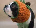 The Great Pumpkin Dog Hat by BeanTownHandmade