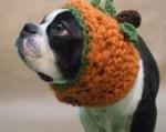 The Great Pumpkin Dog Hat by BeanTownHandmade
