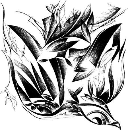 bird2-conflict copy 1
