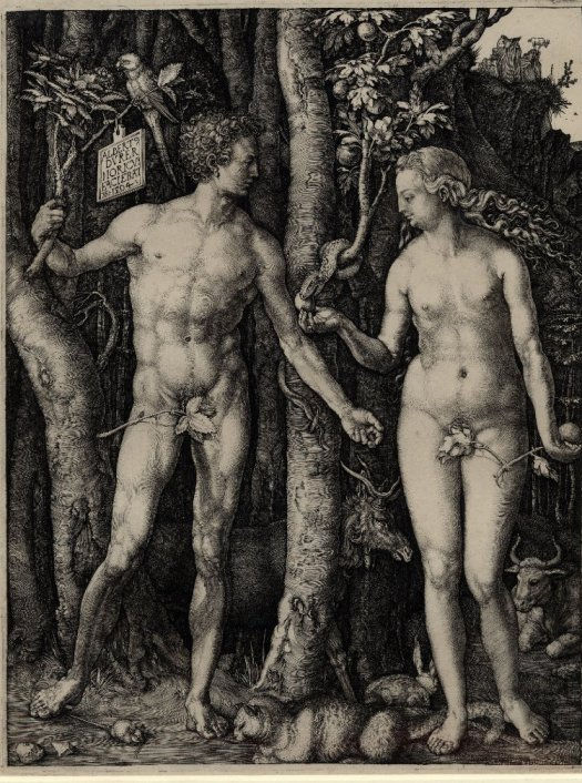 """Adam and Eve standing on either side of the tree of knowledge with the serpent"" by Albrecht Dürer"