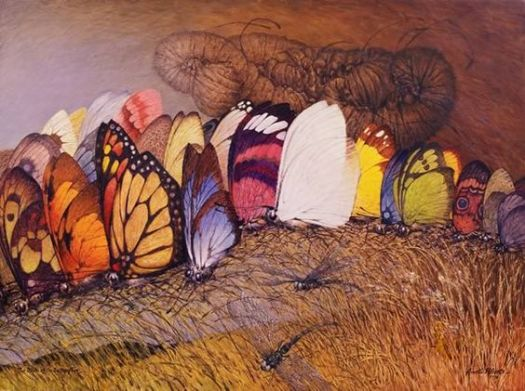 """The Birth of the Butterflies"" by Ainslie Roberts"